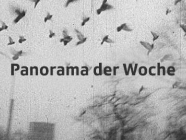 Fernsehbestand Panorama der Woche (Memobase Vorgängerversion)